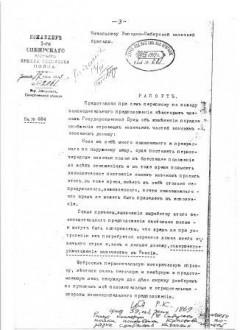 Рапорт П.Н. Краснова